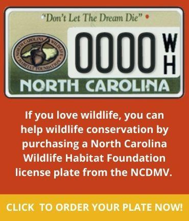 NCWHF License Plates